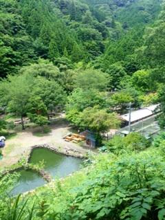 0827_ヤマメ平②